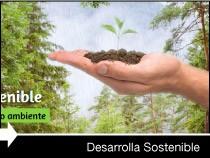 Diseño web de la página de Desarrolla Sostenible. Vitoria-Gasteiz.