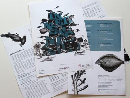Diseño de la identidad, folleto, libro y sala de exposiciones de Inmersiones 2010 de la Diputación Foral de Álava.