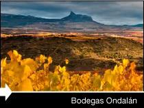 Diseño web de la página de Bodegas Ondalán. Rioja Alavesa.