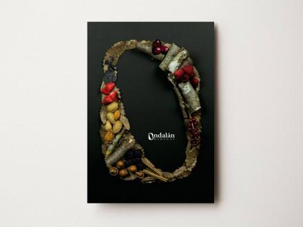 Comunicación, branding diseño y maquetación para Bodegas Ondalán. Rioja Alavesa. Rioja